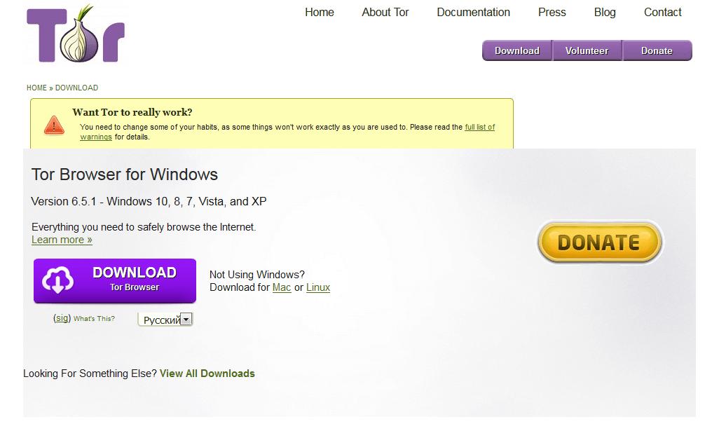 скачать браузер тор бесплатно видео hidra